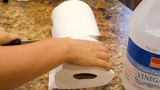 VIDEO / Ce se întâmplă după ce înmoi hârtie igienică în oțet