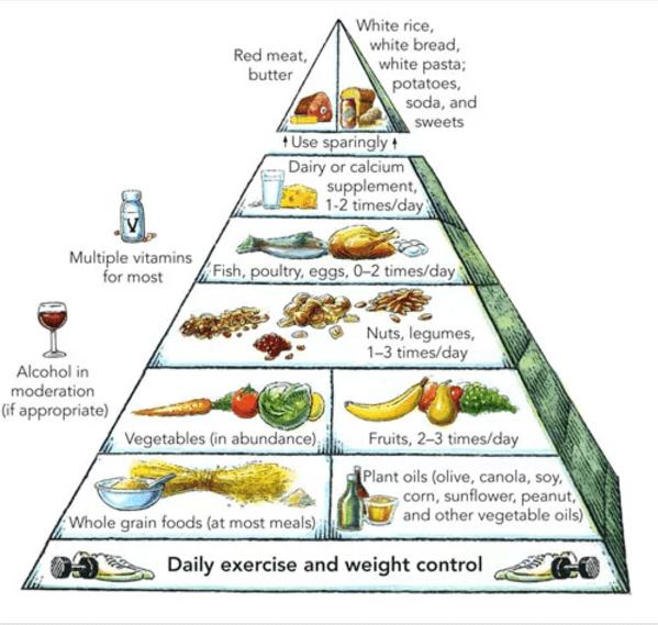 Healthy Eating: A guide to the new nutrition, un raport despre sănătate publicat în Harvard Health Publications. FOTO: helpguide.org